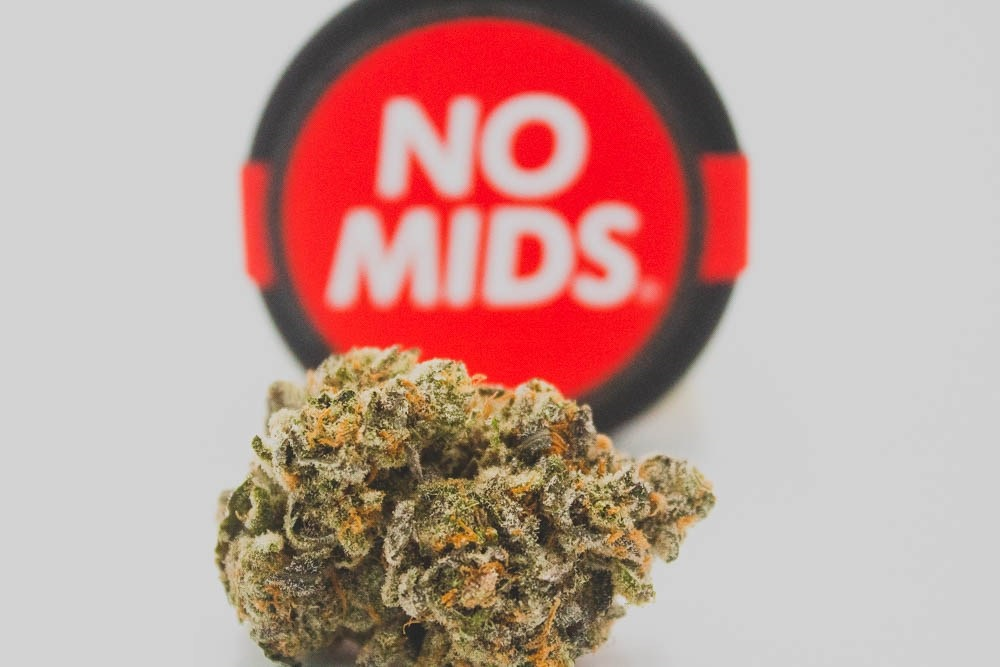 No Mids platinum huckleberry cookies strain seattle cannabis co seattle washington